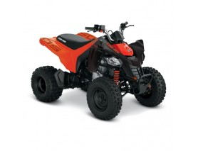 CAN-AM DS 250 INT MY21