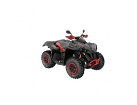 CAN-AM RENEGADE XXC 1000 T MY21