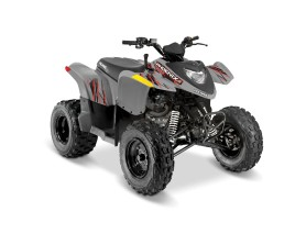 POLARIS PHOENIX 200 Avalanche Gray MY21